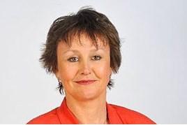 Gillian Wilmot, Board Mentoring