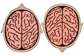 AM aftersales customer's brain