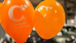 Chestnut Tree House balloons