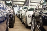 Used cars ready for auction