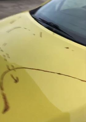 Damage caused to a Renault Clio in attack on Murray Motors used car dealership